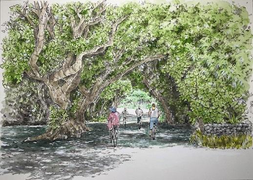 160504竹富島の絵3.jpg